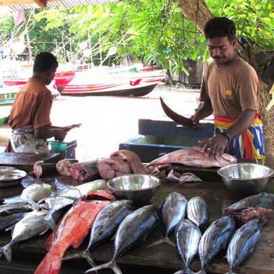 מה אוכלים בסרי לנקה